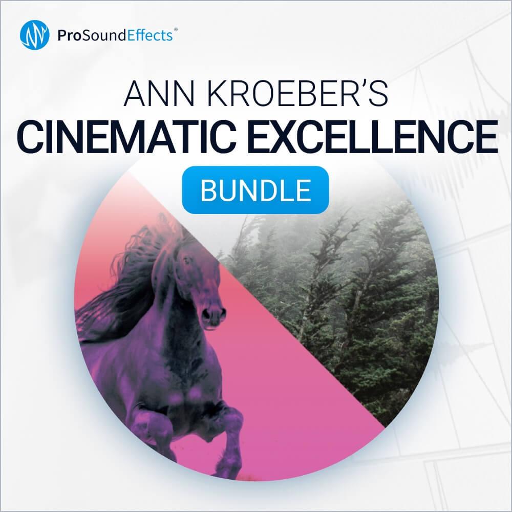 Ann Kroeber's Cinematic Excellence Bundle