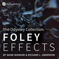 odyssey-foley
